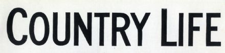 1943 COUNTRY LIFE Magazine Elizabeth Grenfell, Dinton Wilts MAGAZINE (8442)